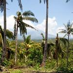 View of the Mayon volcano from Balinad, Daraga, Albay, Philippines