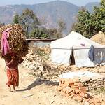 Woman carrying fodder, Pipaldanda, Sindupalchowk, Nepal